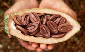 Chocolate Valrhona Ascaso